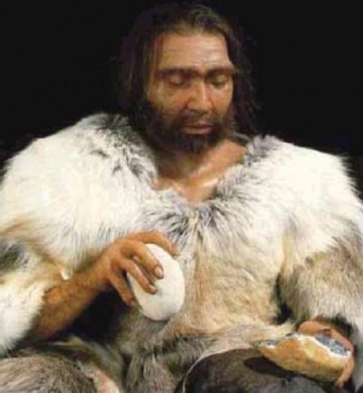 medium_neandertal.jpg