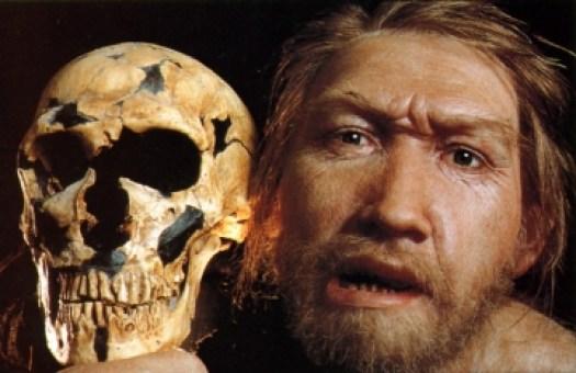 medium_neandertal_2.jpg