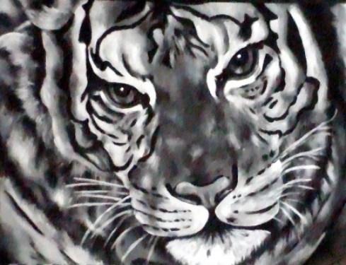 portrait-de-tigre-n2-1.jpg