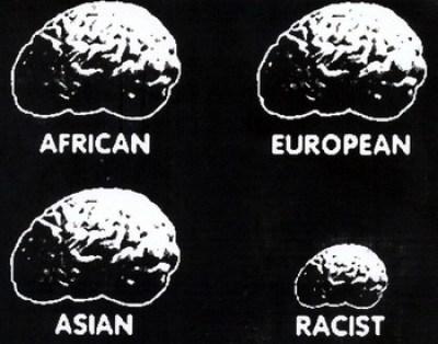 racisme-cerveau.jpeg