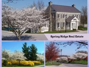 Spring Ridge Community real estate