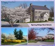 Spring Ridge Community Information
