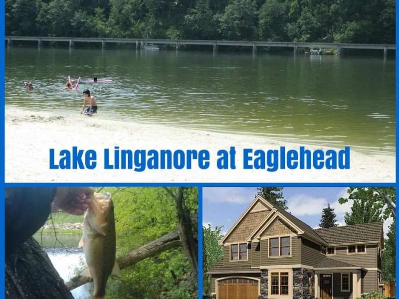 Lake linganore homes