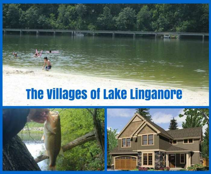 Lake Linganore Real Estate Market Report – Summer 2015