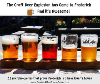 Craft Beer and Microbreweries in Frederick MD