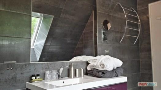 vasque avec mirroir