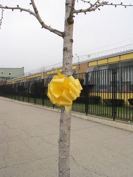 Yellow Ribbon, April, 2003, photo by Fred Hatt