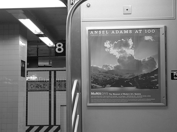Ansel Adams at 100, 2003, photo by Fred Hatt