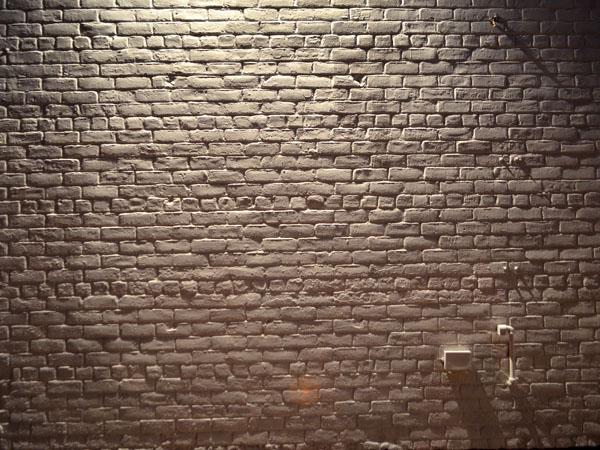 Brick Wall, 2012, photo by Fred Hatt