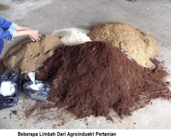 Pakan dari limbah agroinustri pertanian