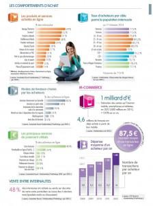 chiffre-Ecommerce-marche-internet-2013-03