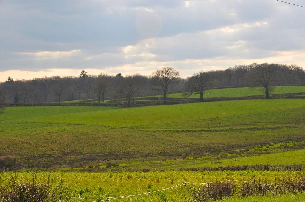 bourgogne landscape