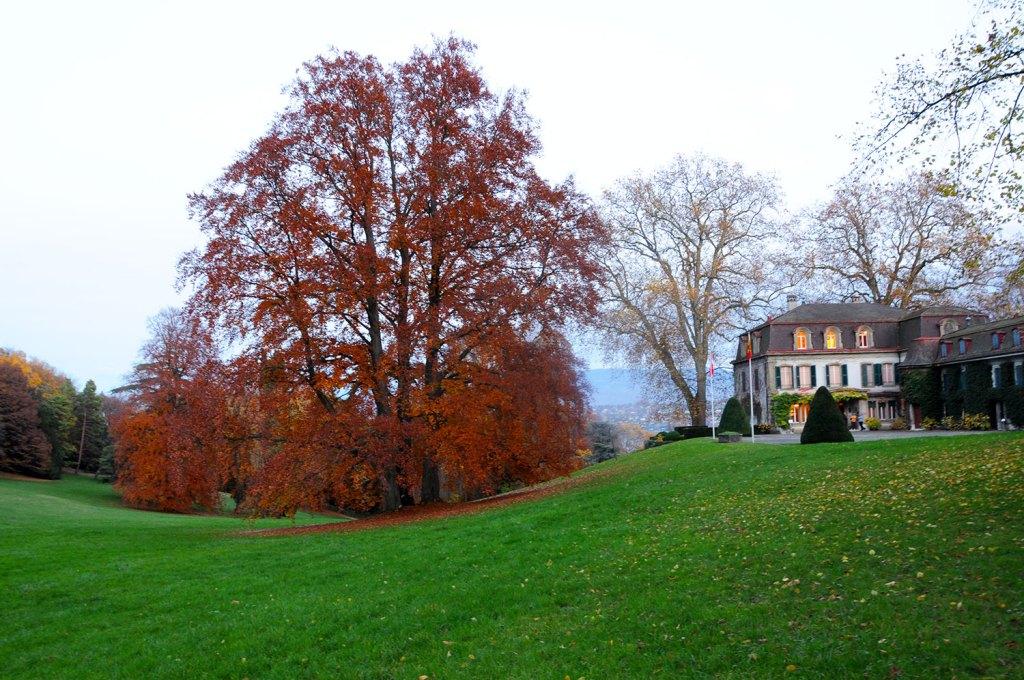 Chateau de Penthes Geneva