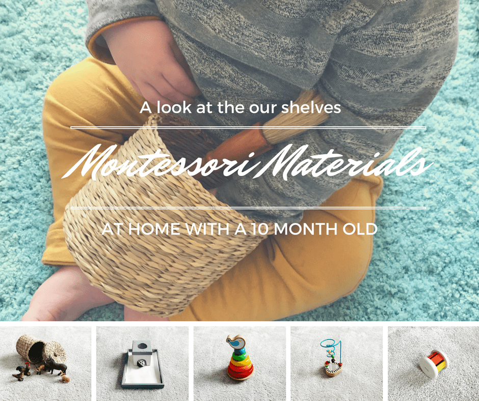 The Montessori Materials we used at home with our 10 month old, spoiler alert; the object permanence box isn't worth the spend!