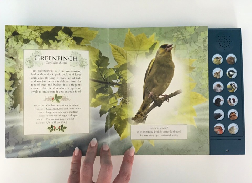 The Little Book of Garden Bird Song children's book