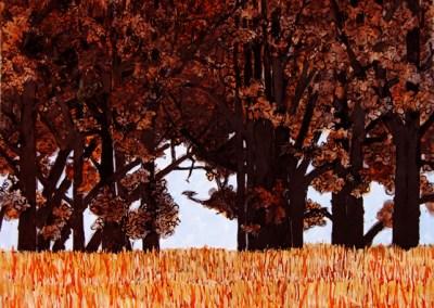 Glendalough Oaks on a Lakeshore