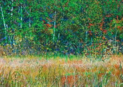 Poplars and Prairie