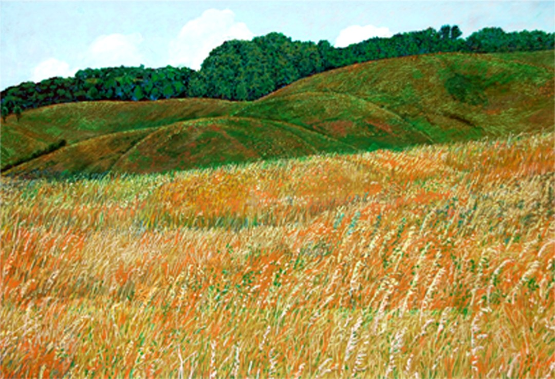 oil pastel landscape glacial hills Glendalough State Park Minnesota