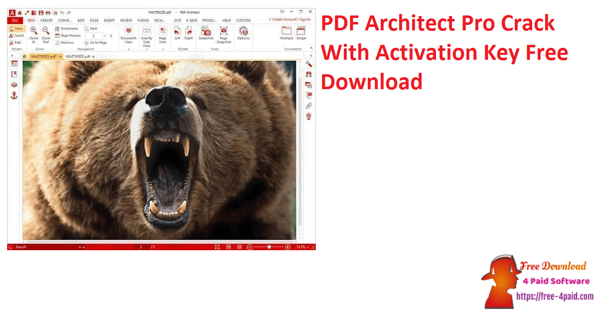 PDF Architect Pro Crack With Activation Key Free Download