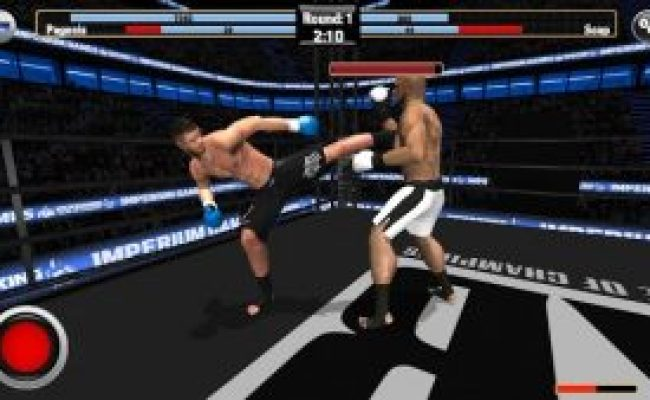 Kickboxing Road To Champion Over 60 Different Fighters