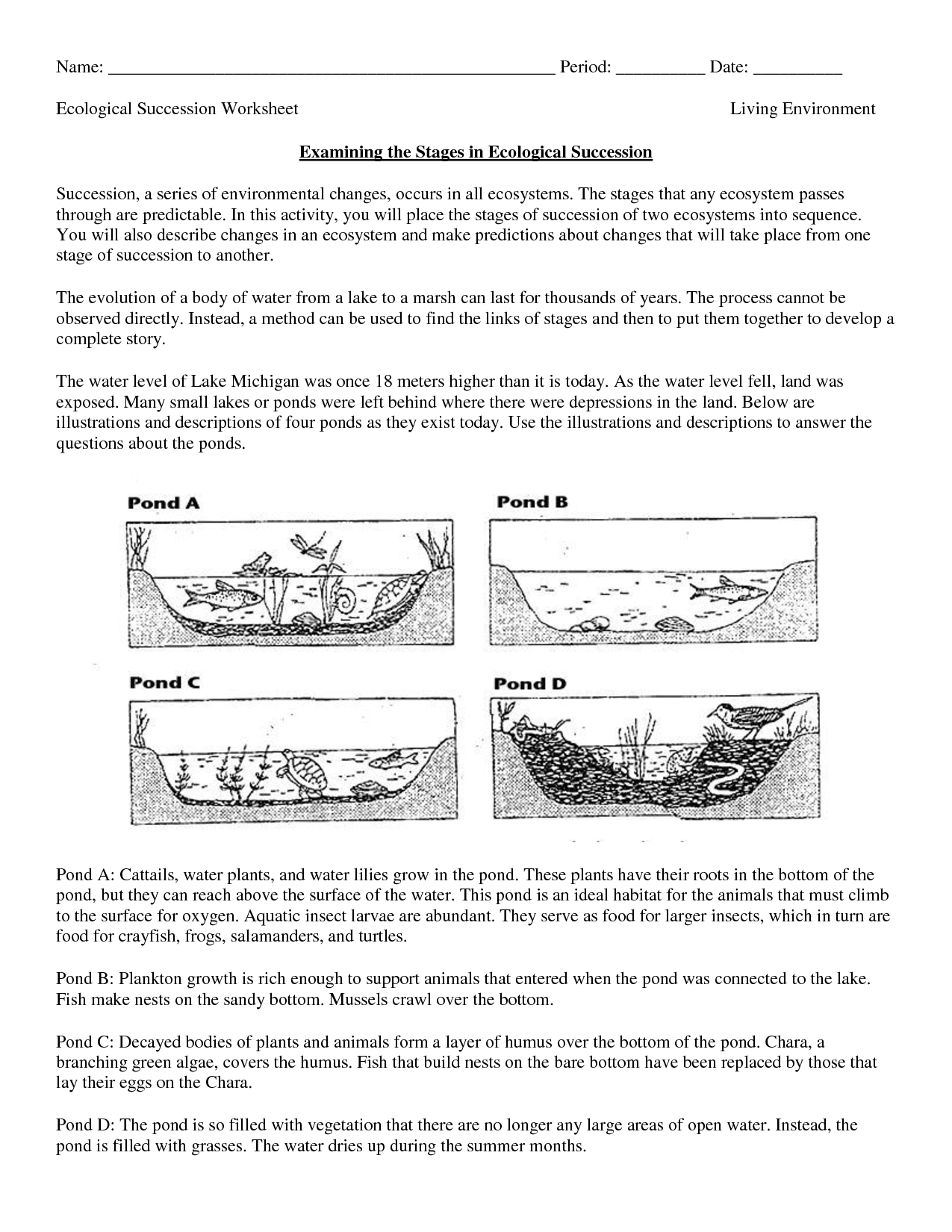 Free Printable Biology Worksheets For High School