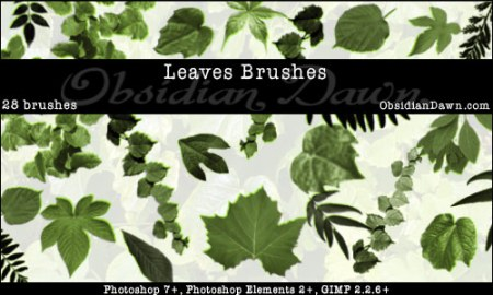 Leaves_Photoshop_Brushes-450x270