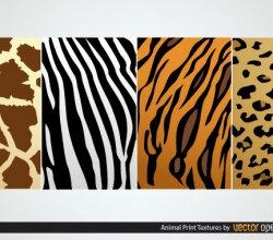 Vector Animal Print Textures:  Zebra, Tiger, Giraffe, Leopard Skin Texture