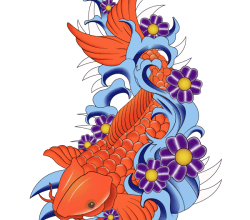 Japanese Koi Fish Vector Image