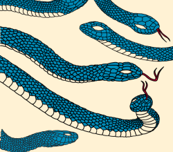 Vector Snake Illustrator Pack