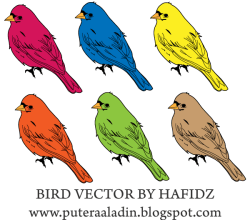 Birds Vector Pack