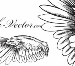 Free Vector Angelic Wings