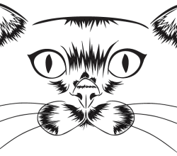 Vector Cat