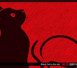 Black Cat in the Rain Vector Illustration