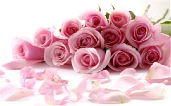 Romantic-bouquet-of-pink-roses_s