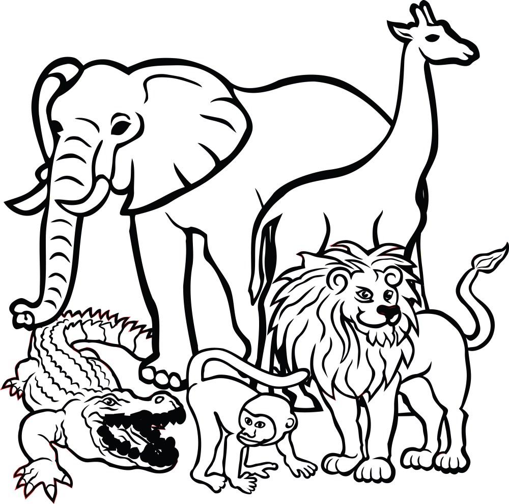medium resolution of clipart of animal