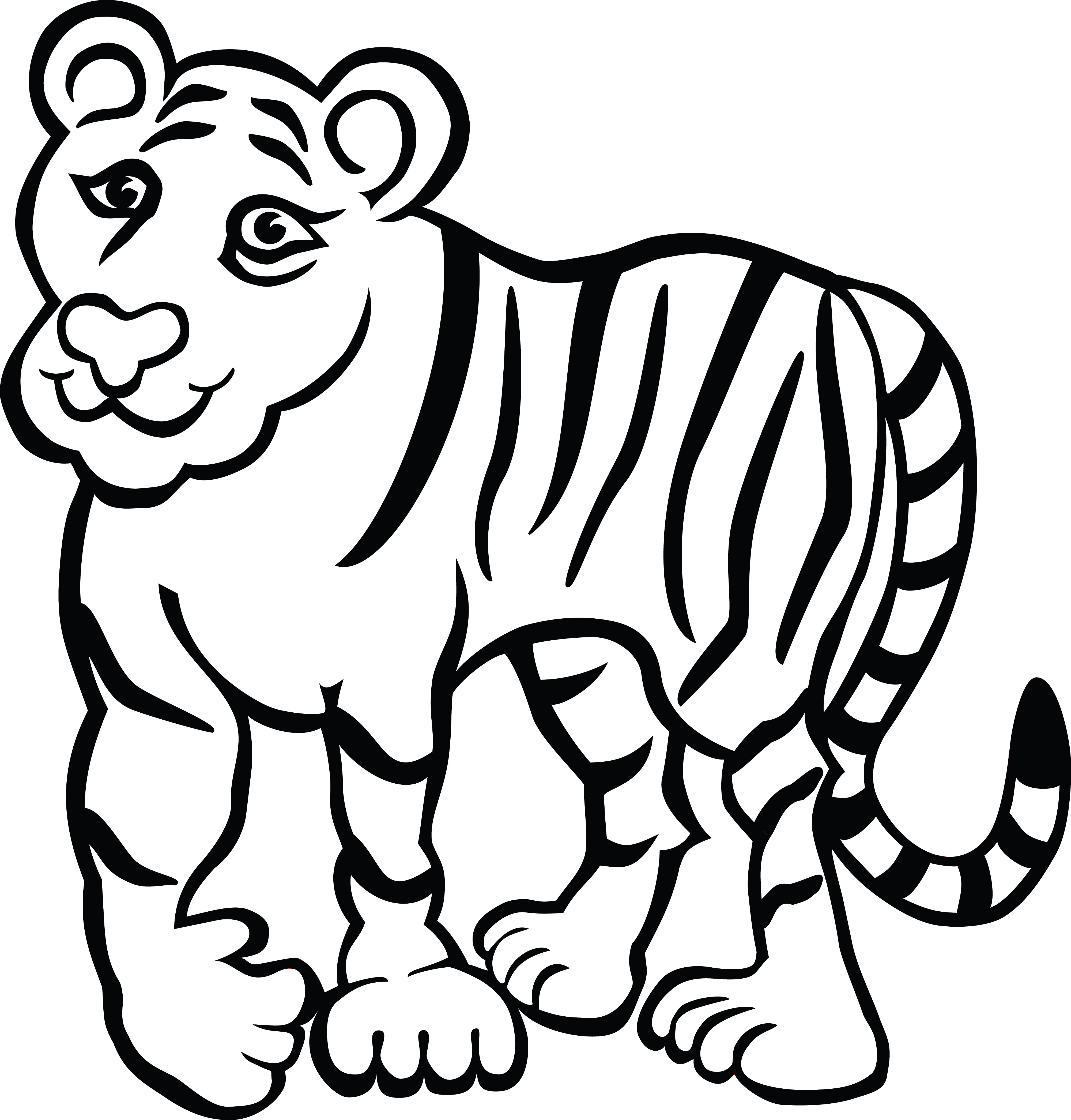tiger house cat