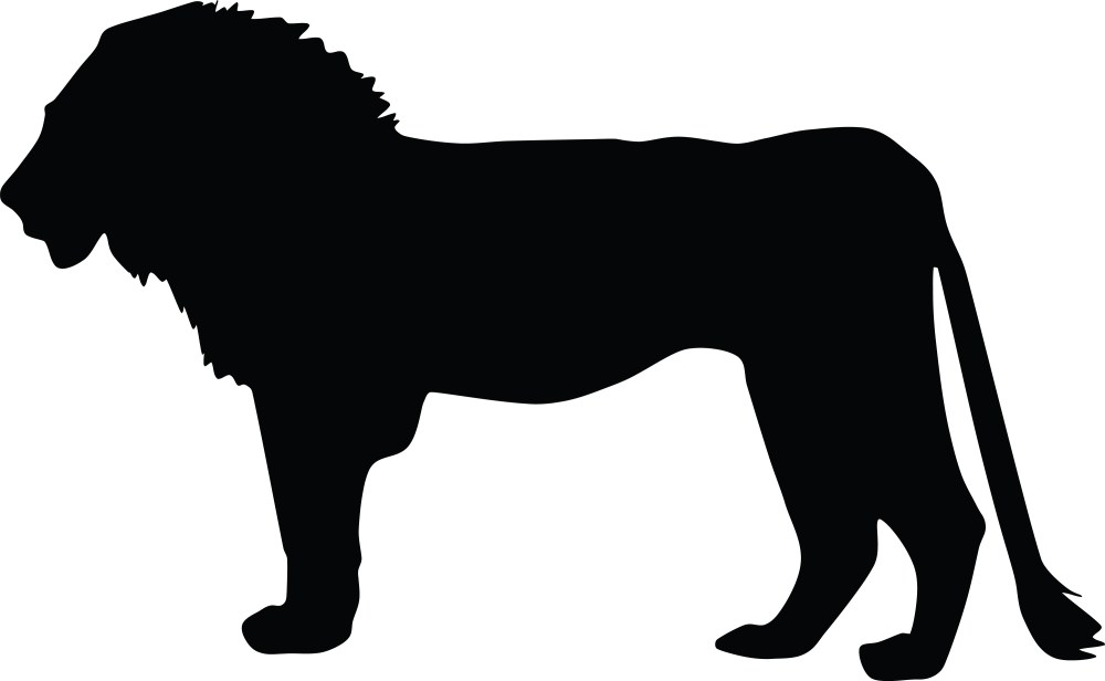 medium resolution of  lion and lioness clipart