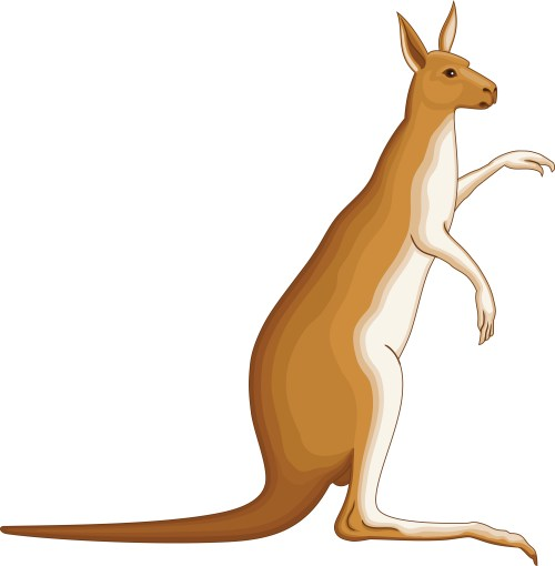 small resolution of clipart kangaroo