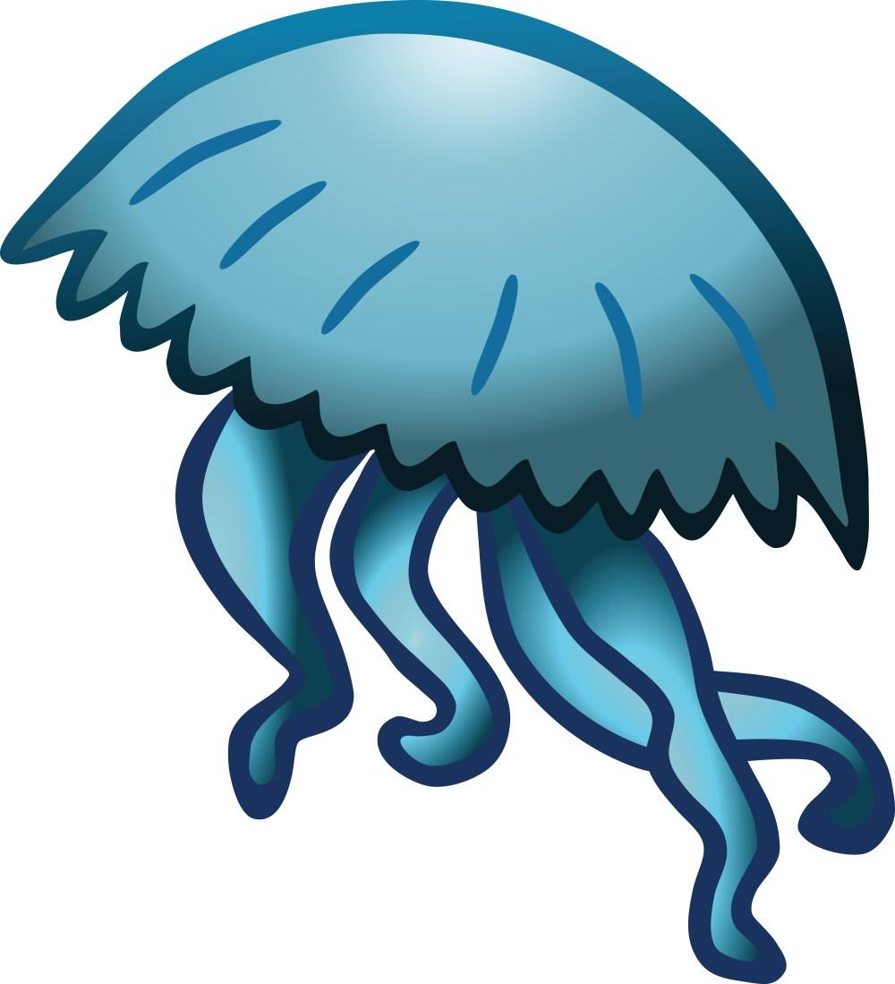 medium resolution of clipart jellyfish
