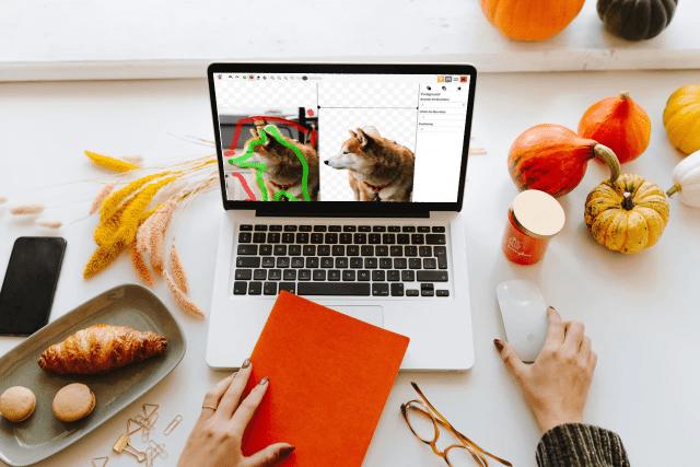 PhotoScissors 免費線上去背工具,免下載軟體跨平台也能處理圖片