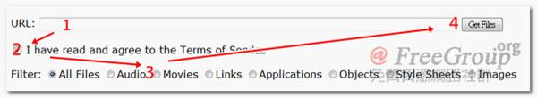 輸入網址後,勾選同意條款,接著篩選需要的檔案類型