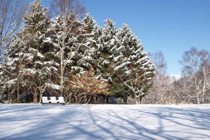 真駒内公園 雪の風景