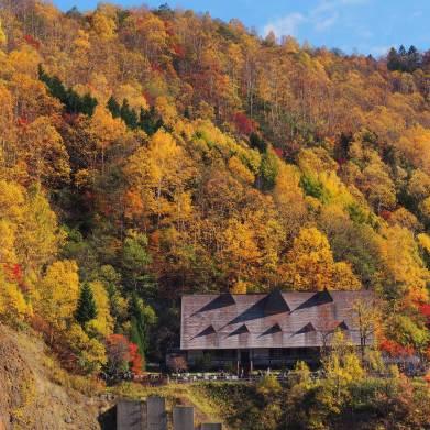 札幌 豊平峡の紅葉