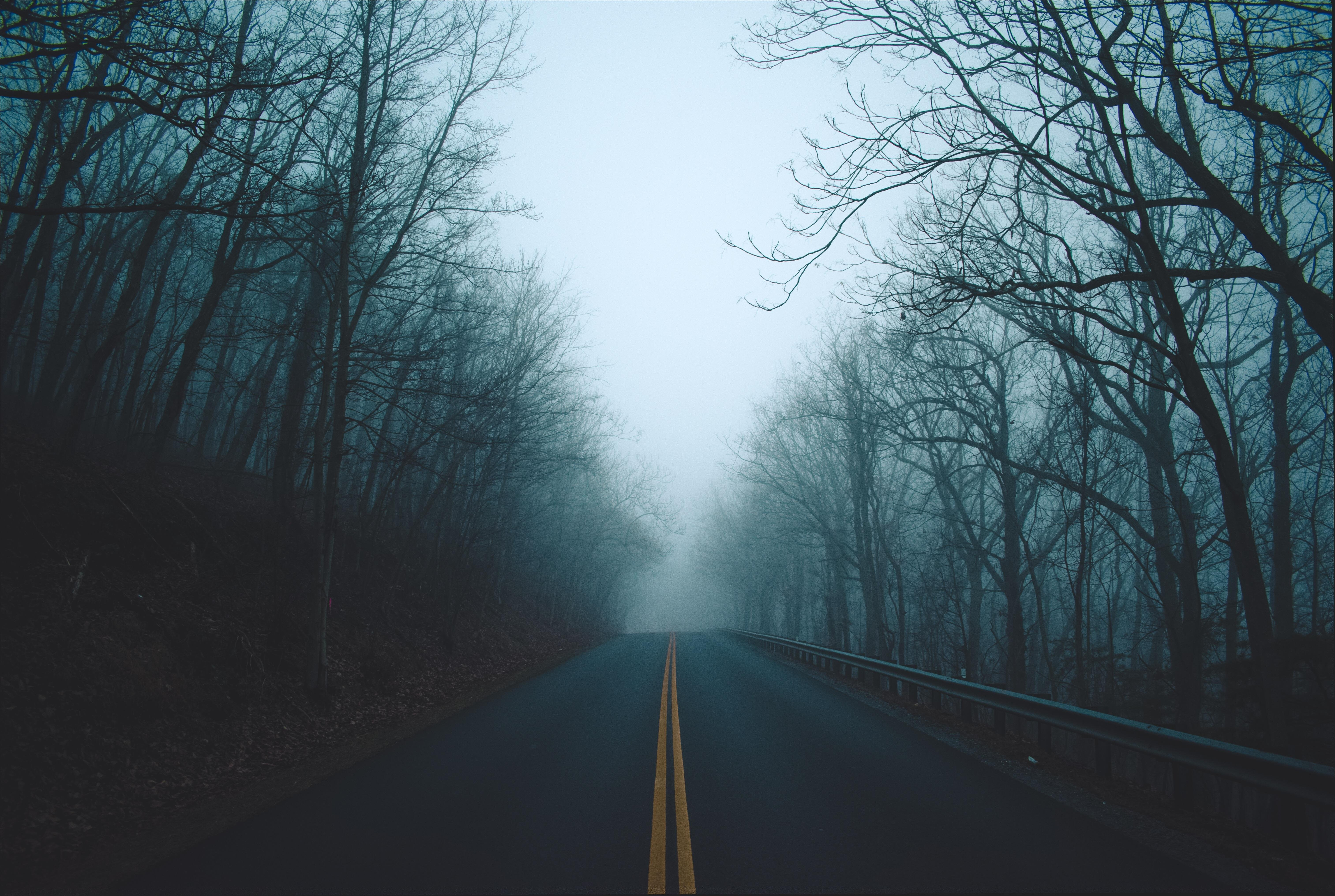Foggy Road 4k Wallpaper
