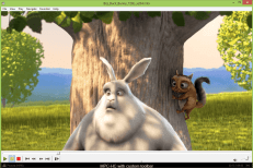 Media Player Classic Home Cinema Portable 2019