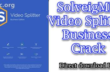 SolveigMM Video Splitter Business Crack