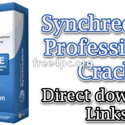 Synchredible Professional Crack