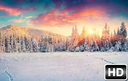 Iphone 5 Falling Snow Wallpaper Winter Amp Snow Wallpapers Hd New Tab Themes Hd Wallpapers