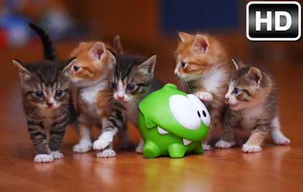 Super Cute Puppies And Kittens Wallpaper Baby Animals Wallpapers Hd New Tab Themes Free Addons