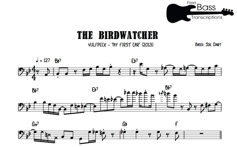 gotw-the-birdwatcher
